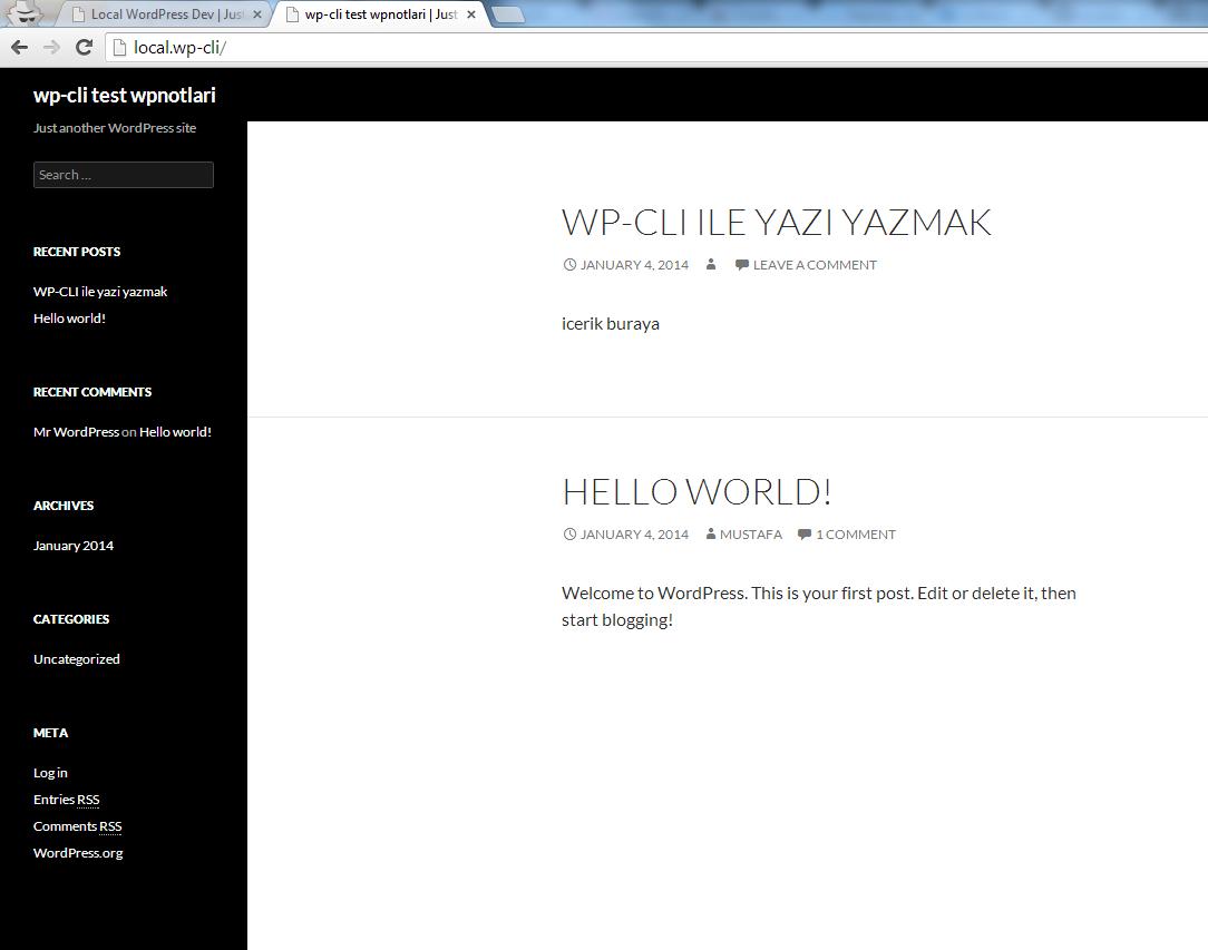 WP-CLI kullanarak oluşturulmuş bir yazı
