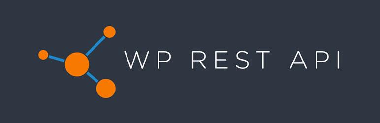 wp-api
